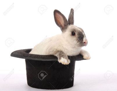 6402003-Cute-bunny-rabbit-climbing-out-of-a-black-hat-Stock-Photo-magician.jpg